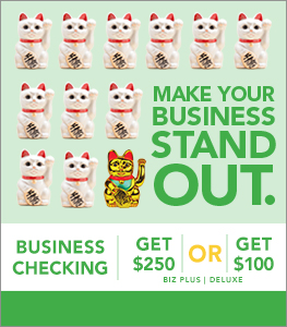 Biz Checking Plus/Deluxe