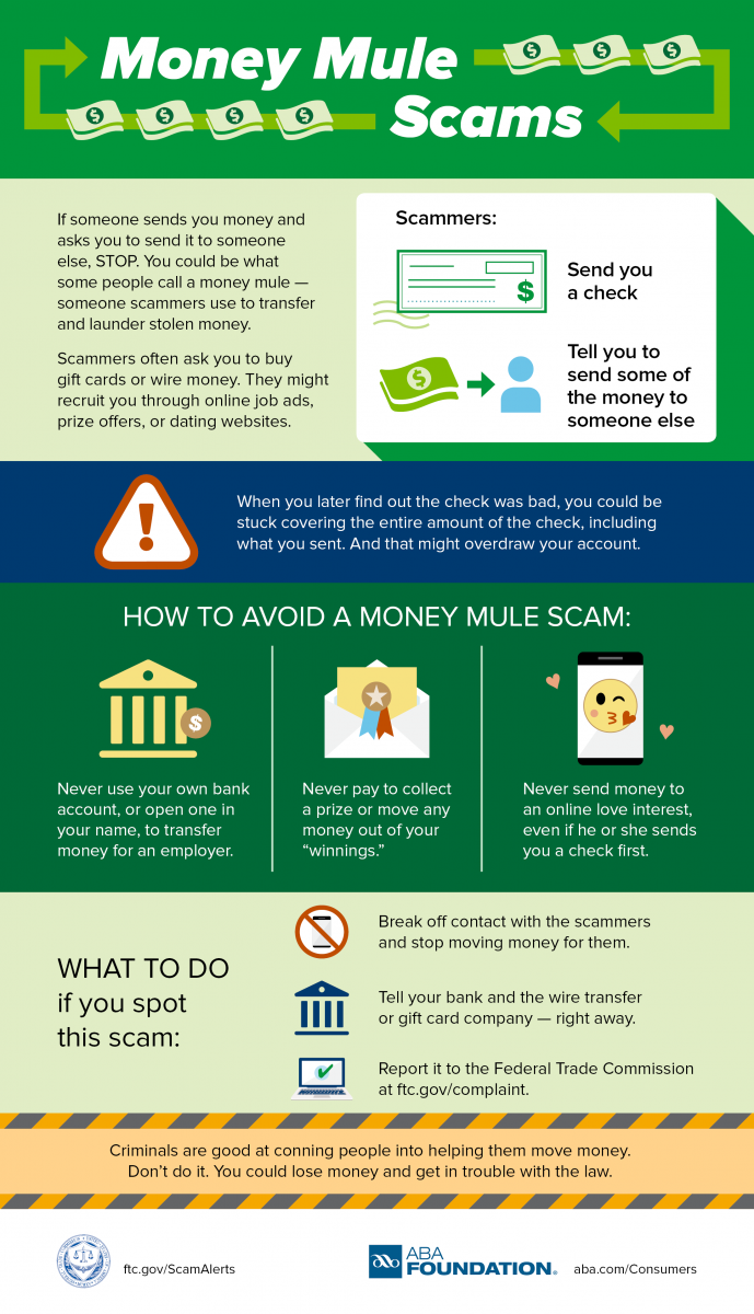 Federal Trade Commission Money Mule Scams Infographic